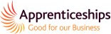 Apprenticeships badge